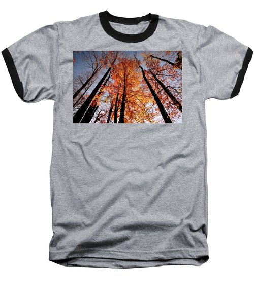 Fall Trees Sky Baseball T-Shirt