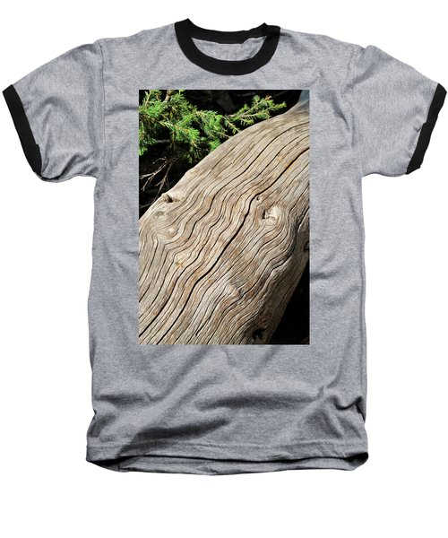 Fallen Fir Baseball T-Shirt