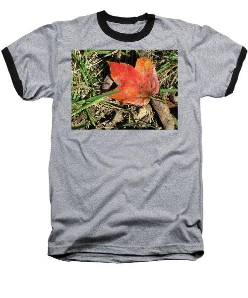 Fallen Leaf Baseball T-Shirt by Michele Wilson