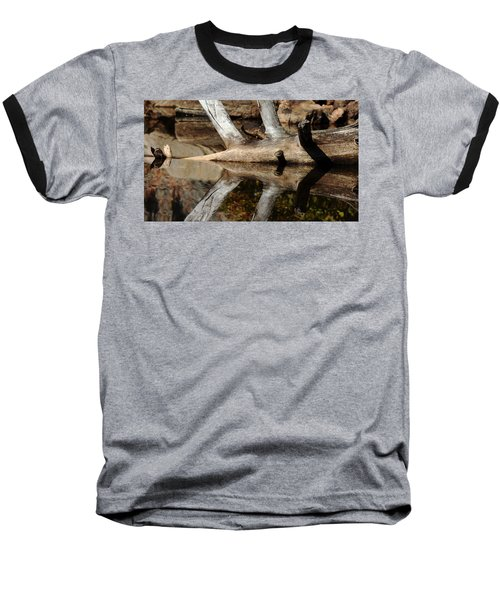 Fallen Tree Mirror Image Baseball T-Shirt by Debbie Oppermann