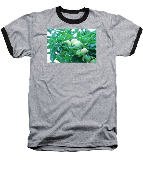 Fall's Bounty Baseball T-Shirt
