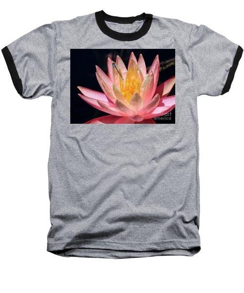 Familiar Bluet Damselfly And Lotus 2 Baseball T-Shirt