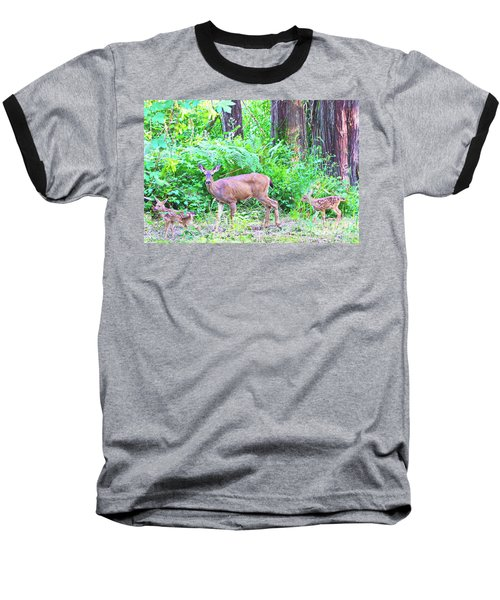 Family In The Wild Baseball T-Shirt by Ansel Price