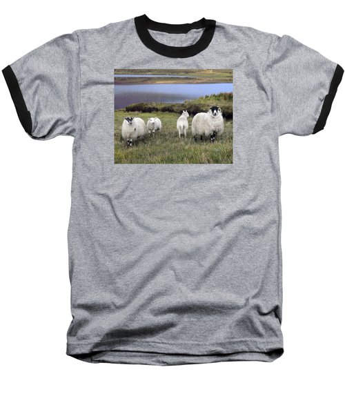 Family Of Sheep Baseball T-Shirt