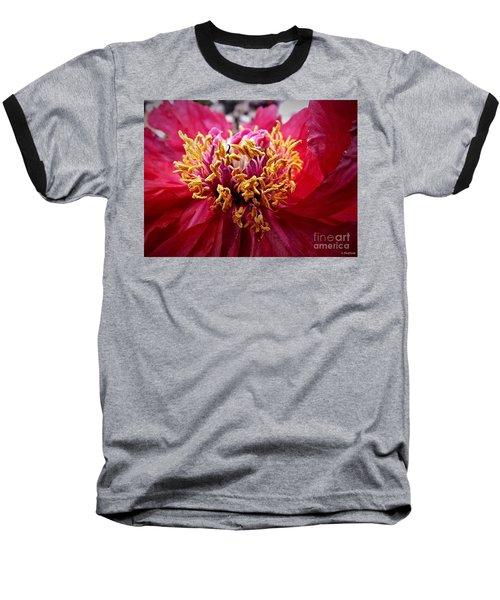 Fancy  Baseball T-Shirt by Christy Ricafrente