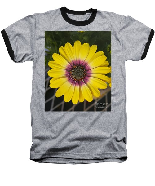 Fascinating Yellow Flower Baseball T-Shirt by Jasna Gopic