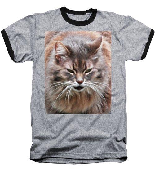 Fat Cats Of Ballard 4 Baseball T-Shirt