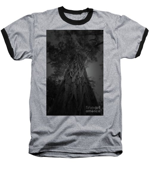 Feathered Bark Baseball T-Shirt