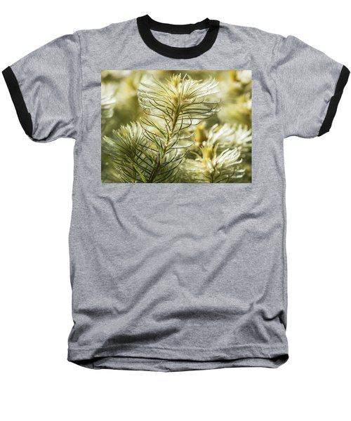 Featherheads Baseball T-Shirt