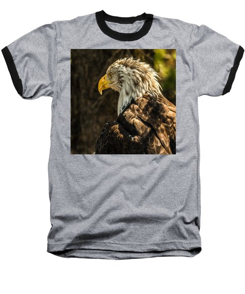 Baseball T-Shirt featuring the photograph Feathers In Light by Yeates Photography