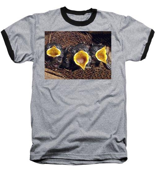 Feed Me Baseball T-Shirt by Judi Saunders