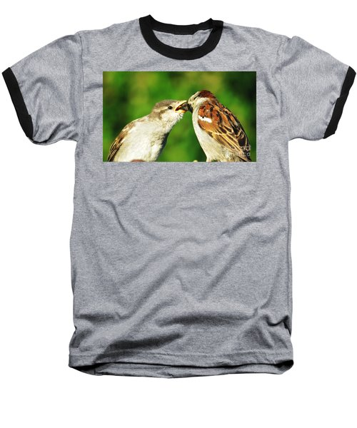 Feeding Baby Sparrow 3 Baseball T-Shirt by Judy Via-Wolff