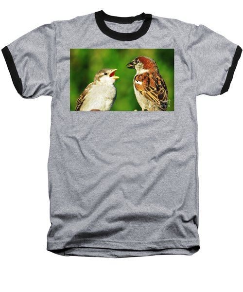 Feeding Baby Sparrows 2 Baseball T-Shirt by Judy Via-Wolff