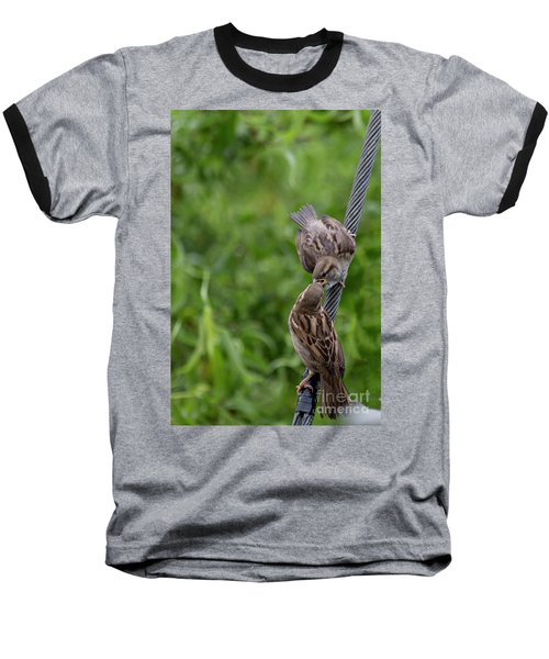 Baseball T-Shirt featuring the photograph Feeding Time by Brian Roscorla