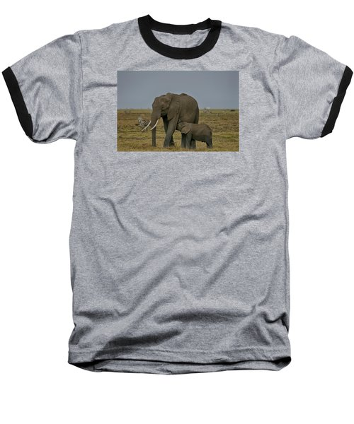 Feeding Time Baseball T-Shirt by Gary Hall