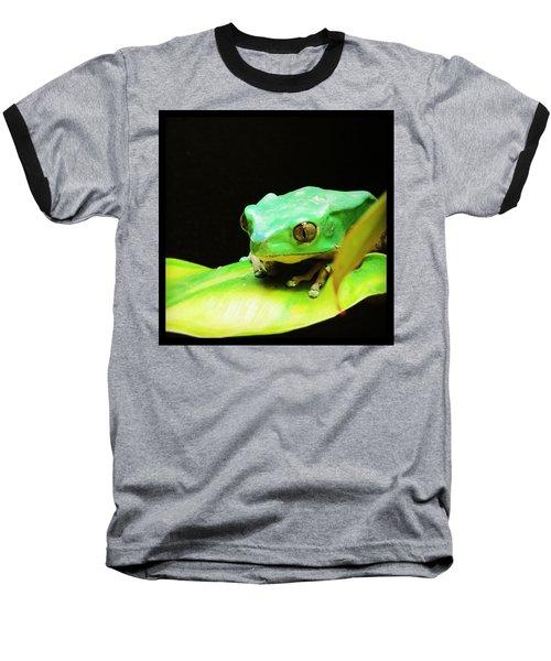 Feeling Froggy Baseball T-Shirt