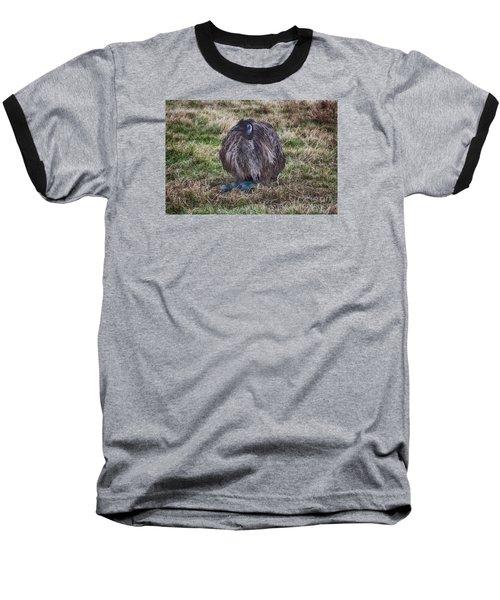 Feeling Kinda Broody  Baseball T-Shirt by Douglas Barnard