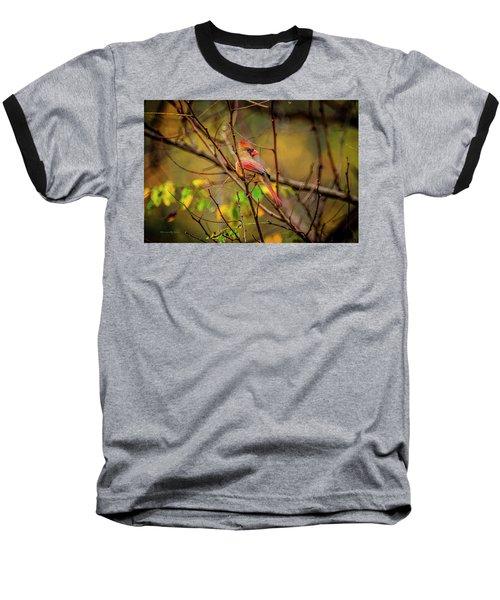 Female Cardinal #1 Baseball T-Shirt