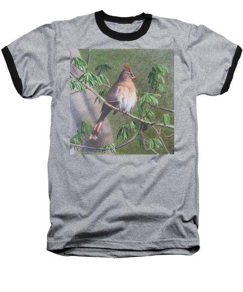 Female Cardinal Baseball T-Shirt