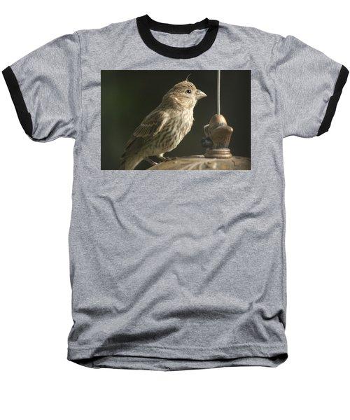 Female House Finch On Feeder Baseball T-Shirt