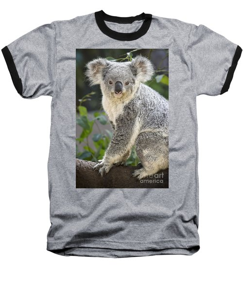 Female Koala Baseball T-Shirt by Jamie Pham
