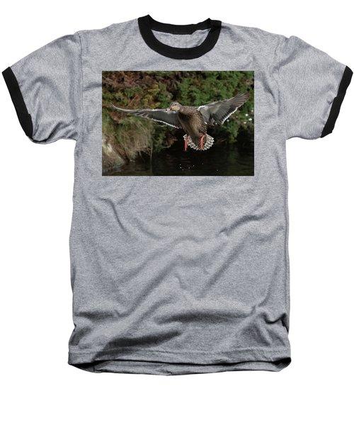 Female Mallard Baseball T-Shirt