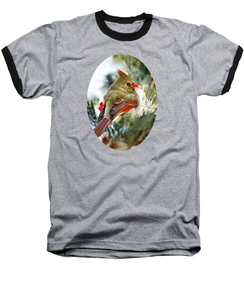 Female Northern Cardinal Baseball T-Shirt by Christina Rollo