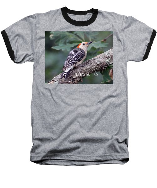 Female Red-bellied Woodpecker Baseball T-Shirt by Diane Giurco