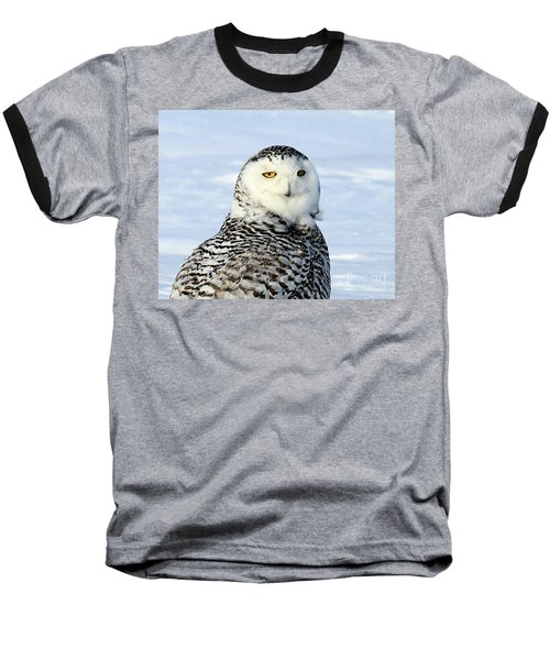 Female Snowy Owl Baseball T-Shirt