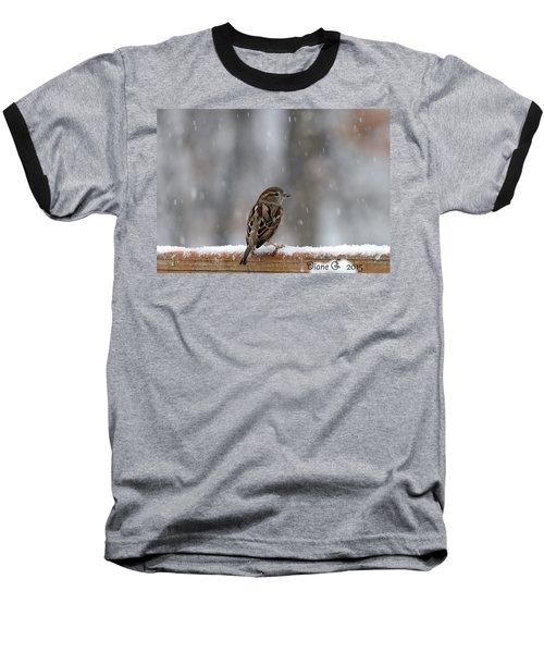 Female Sparrow In Snow Baseball T-Shirt by Diane Giurco