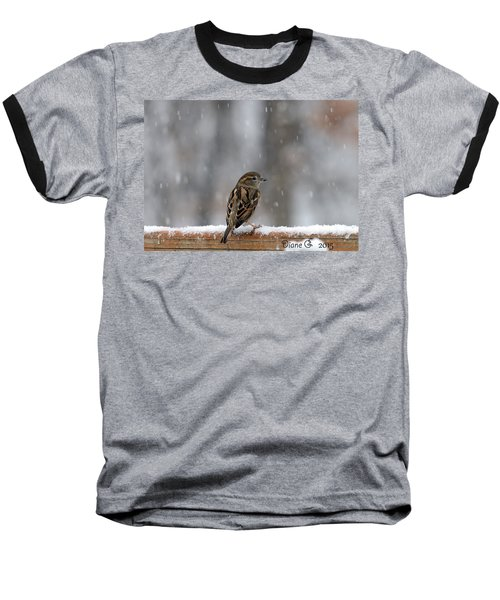 Female Sparrow In Snow Baseball T-Shirt