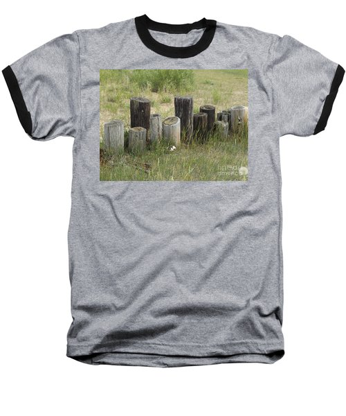 Fence Post All In A Row Baseball T-Shirt by Erick Schmidt