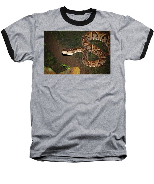 Baseball T-Shirt featuring the photograph Fer-de-lance, Botherops Asper by Breck Bartholomew