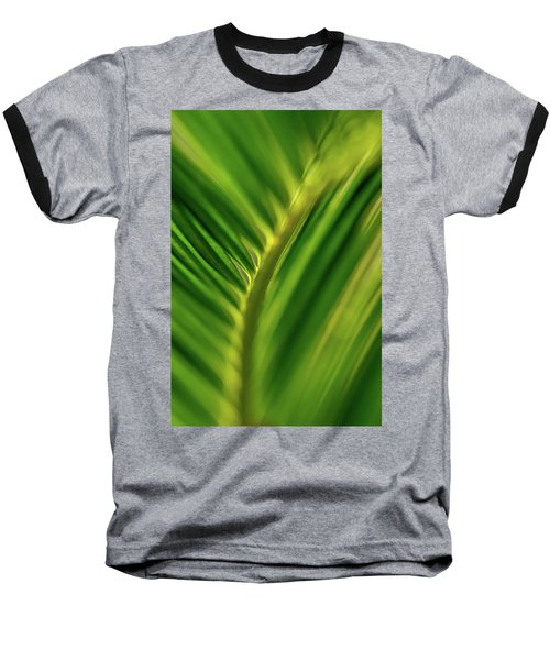 Fern Baseball T-Shirt by Jay Stockhaus