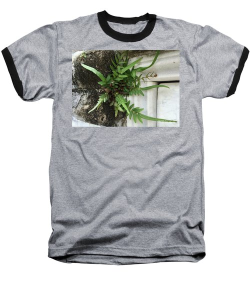 Baseball T-Shirt featuring the painting Fern by Kim Nelson