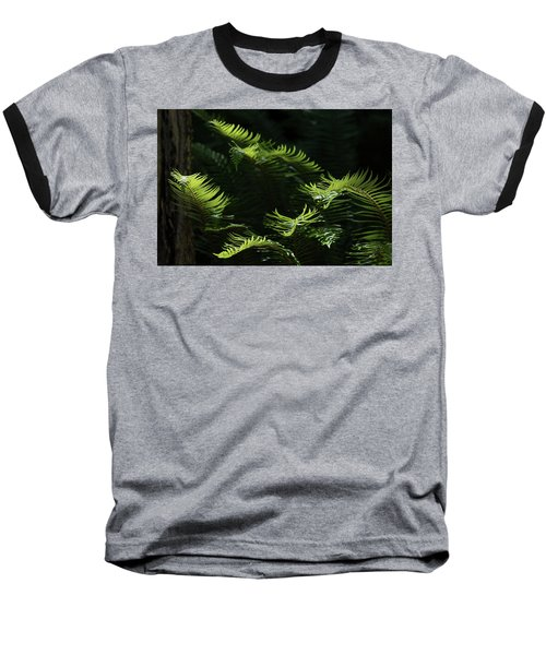 Ferns In The Forest Baseball T-Shirt by Keith Boone
