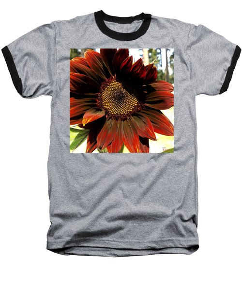 Fibonacci Hues Baseball T-Shirt