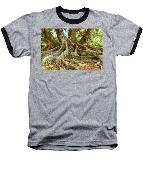 Ficus Roots Baseball T-Shirt
