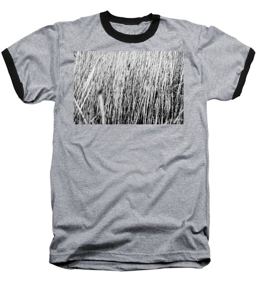 Field Grasses Baseball T-Shirt