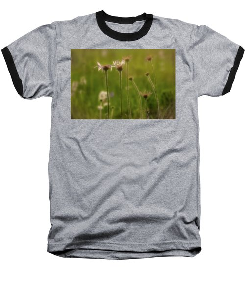 Field Of Flowers 2 Baseball T-Shirt