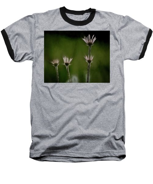 Field Of Flowers 4 Baseball T-Shirt