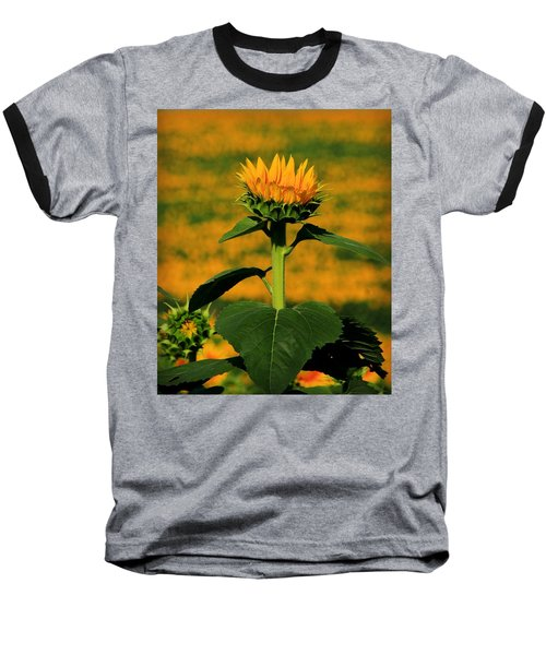 Baseball T-Shirt featuring the photograph Field Of Gold by Chris Berry