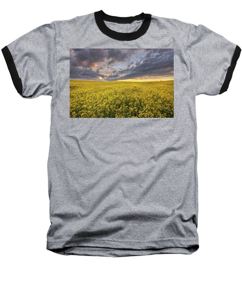 Field Of Gold Baseball T-Shirt by Dan Jurak