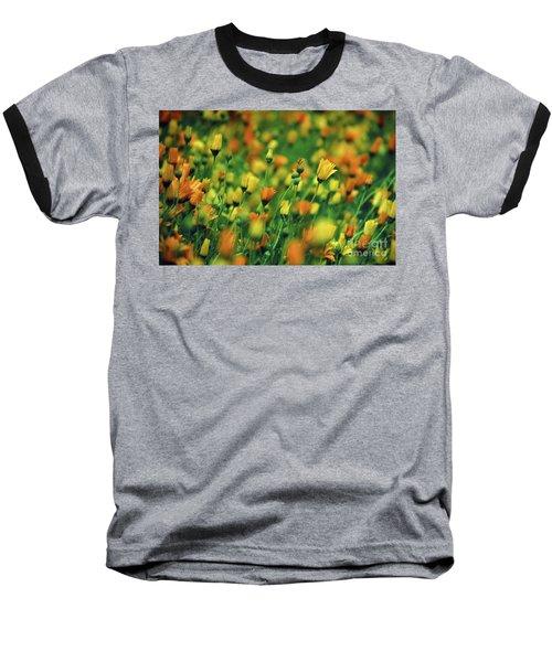 Field Of Orange And Yellow Daisies Baseball T-Shirt