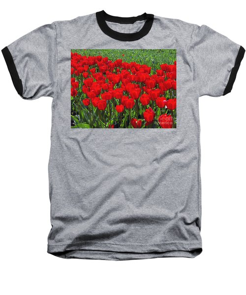 Field Of Red Tulips Baseball T-Shirt
