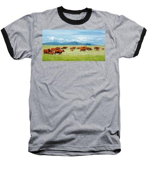 Field Of Reds Baseball T-Shirt