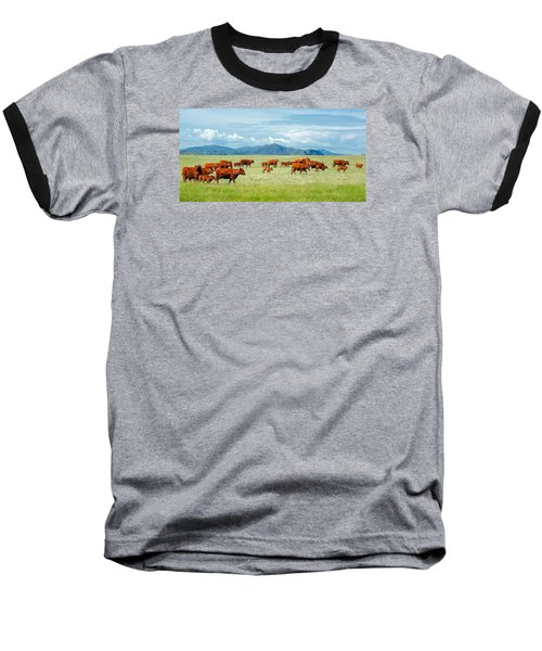 Field Of Reds Baseball T-Shirt