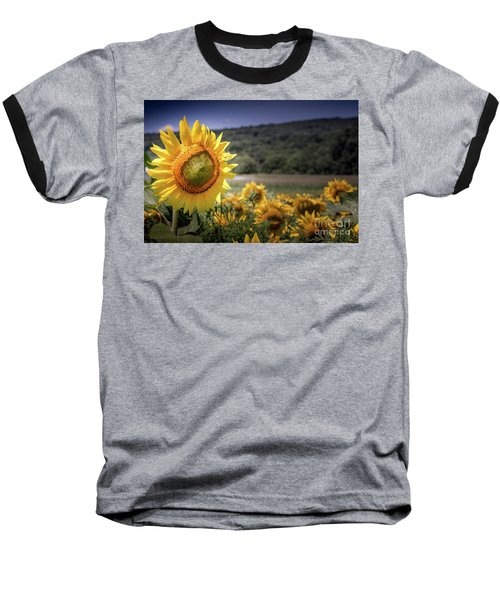 Field Of Sunflowers Baseball T-Shirt