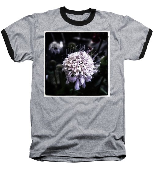 Baseball T-Shirt featuring the photograph Field Scabious. A Member Of The by Mr Photojimsf
