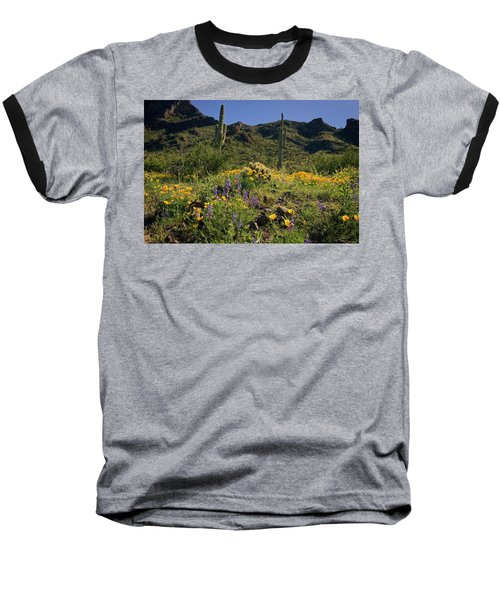 Fields Of Glory Baseball T-Shirt by Lucinda Walter